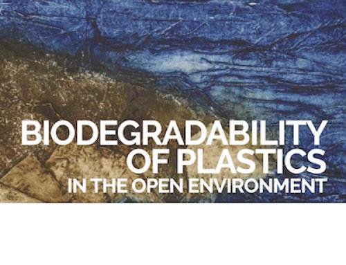 Nuevo dictamen científico sobre la biodegradabilidad de los plásticos en el entorno abierto